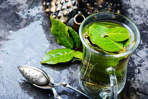 Tisana di alloro per dimagrire: Questo rimedio naturale funziona davvero?